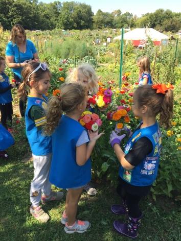Troy Gardens Girl Scout volunteers